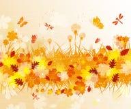 Autumn  background Stock Photo
