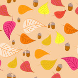 Autumn background. With some leaves and acorns Royalty Free Stock Photos