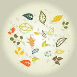 Autumn Background. Autumn leaves,beautiful abstract fall background Stock Photography