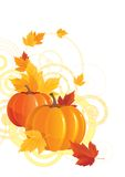 Autumn background. Vector illustration of pumpkins and leaves on abstract background Royalty Free Stock Photography