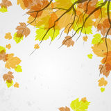 Autumn background. Vector illustration. Eps 10 Royalty Free Stock Image