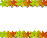 Autumn Background. With colorful fall leaves in line royalty free stock image