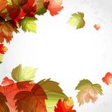 Autumn Background. Lizenzfreie Stockfotos