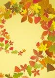 Autumn Background. Lizenzfreies Stockfoto