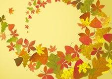 Autumn Background. Stockfoto