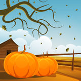 Autumn Background Fotografia Stock Libera da Diritti