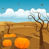 Autumn Background Immagini Stock