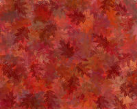 Autumn Background. Oak leaf design background, in Autumnal colours Stock Photos