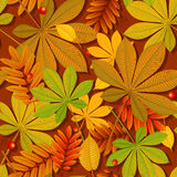 Autumn background. Autumn abstract background with leaf. eps 10 Royalty Free Stock Images