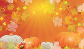 Autumn background. Autumn abstract background with leaves and pumpkins. EPS 10 format Stock Images