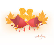 Autumn background with acorns and leaves Stock Photo