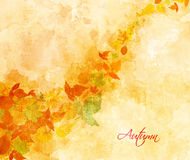 Autumn background with acorns and leaves Royalty Free Stock Photos