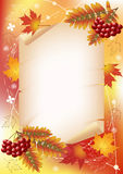 Autumn background with ashberry. Stock Image