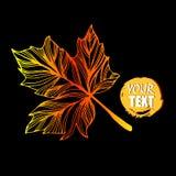 Autumn background. Autumn leaves illustration. autumn heart. nat. Ure vector illustration