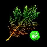 Autumn background. Autumn leaves illustration. autumn heart. nat. Ure stock illustration