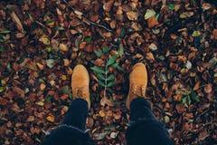 Autumn Background av kängor och sidor arkivfoto