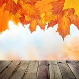 Autumn Background avec le Tableau en bois vide image libre de droits
