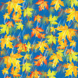 Autumn background.Background with rain drops and maple leaves Stock Image