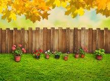 Autumn background at backyard Stock Photo
