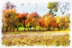 Autumn background beautiful colorful forest landscape nature park with trees in watercolor artistic style pattern. Stock Photography