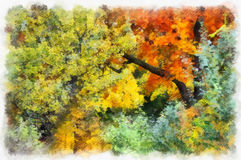 Autumn background beautiful colorful forest landscape nature park with trees in watercolor artistic style pattern. Royalty Free Stock Photo
