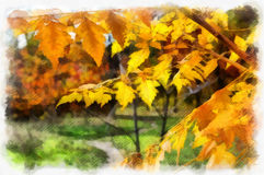 Autumn background beautiful colorful forest landscape nature park with trees in watercolor artistic style pattern. Stock Photo