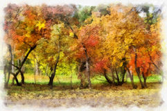 Autumn background beautiful colorful landscape nature park with trees in watercolor artistic style pattern. Stock Photo