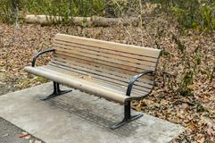 Bench, trees and frozen brown leaves close up Stock Photos