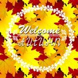 Autumn Background benvenuto Autumn Leaves Potete disporre il vostro testo nel centro Immagini Stock