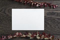 Autumn background with berberry leaves and paper card on table Stock Images