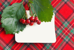 Autumn background with berries of hawthorn Royalty Free Stock Photography