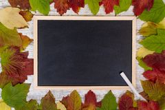 Autumn background. Blackboard and chalk. Frame of colored leaves of viburnum. Copy space, flatly stock photo