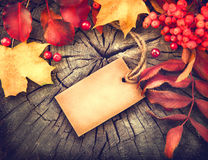 Autumn background with blank greeting card and colourful leaves Stock Photo