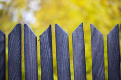 Autumn background with blue wooden fence Royalty Free Stock Images