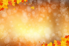 autumn background blurry circle glowing bokeh  Stock Images