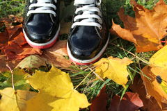 Autumn background- boots and leaves Royalty Free Stock Photo