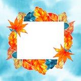 Autumn Background Border Abstrakt konstnärlig nedgångram med ett ställe för text Arkivfoton