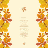 Autumn background with borders of yellow leaves Stock Image