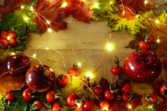 Autumn background in bright colors royalty free stock photo