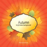 Autumn background with bright leaves Stock Photography