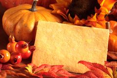Autumn background. Card with copy space and autumn decorations royalty free stock photography