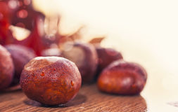 Autumn background with chestnut Royalty Free Stock Photography