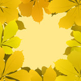 Autumn background with chestnut leaves Stock Images
