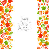 Autumn background with color leaves Stock Photos
