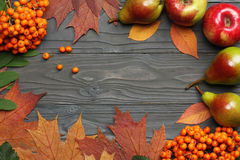 Autumn background with colored leaves on dark wooden board. top view Stock Photography