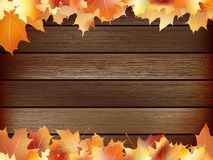 Autumn background with colored leaves. plus EPS10. Autumn background with colored leaves on wooden board. plus EPS10 vector file Royalty Free Stock Image
