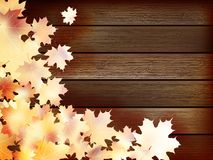 Autumn background with colored leaves. plus EPS10. Autumn background with colored leaves on wooden board. plus EPS10 vector file Royalty Free Stock Images