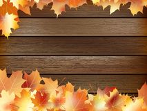 Autumn background with colored leaves. plus EPS10. Autumn background with colored leaves on wooden board. plus EPS10 vector file Stock Photos