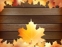 Autumn background with colored leaves. plus EPS10. Autumn background with colored leaves on wooden board. plus EPS10 vector file Stock Image