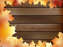 Autumn background with colored leaves. plus EPS10. Autumn background with colored leaves on wooden board. plus EPS10 vector file Royalty Free Stock Photo